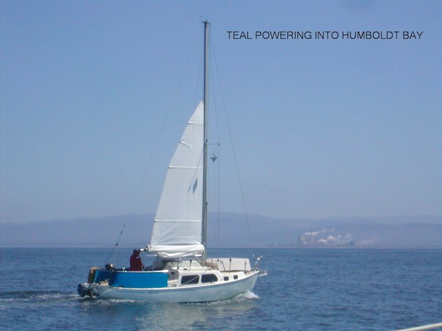 TEAL-POWERING-INTO-HUMBOLDT-BAY_jb